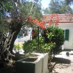 Joanna's Cottage,  Longós