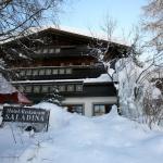 Hotelfoto's: Bio-Hotel Saladina, Gaschurn