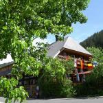 Hotel Pictures: Hotel Hirschen, Menzenschwand
