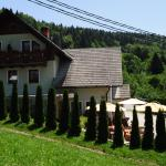 Guesthouse Tourist Farm Grapar, Cerkno