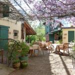 Hotel Pictures: Chambres d'hôtes et Gîte Sous La Tonnelle, Uzeste