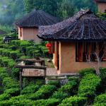 Lee Wine Ruk Thai Resort,  Ban Rak Thai