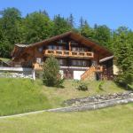 Chalet Spinne, Grindelwald