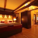 Hotel Pictures: Boutique Hotel Villa Melsheimer, Reil