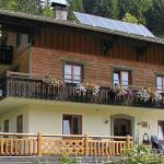 Fotos do Hotel: Hallmooshof, Filzmoos