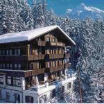 Hotel Bellary, Grindelwald