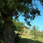 Casa Vacanze Porta Vecchia,  Montalcino