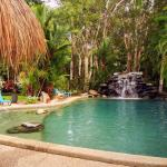 酒店图片: Big4 Port Douglas, Glengarry Holiday Park, Mowbray