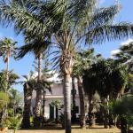 Villa Ponticelli, Carini