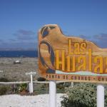 Las Hualas,  Punta de Choros