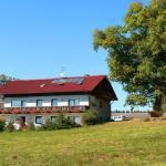Hotel Pictures: Wagner Bauernhof, Falkenstein