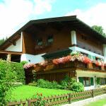 Hotelfoto's: Apartment Bras, Fieberbrunn