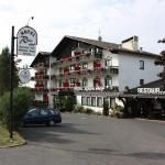 Hotel Pictures: Hotel Rhönhof, Staatsbad Brückenau