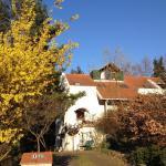 Hotellikuvia: Wienerwald, Klosterneuburg