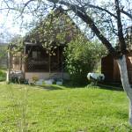 Hotel Pictures: U Galiny Guest House, Kolodishchi