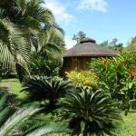 Bungalow Malú, Cahuita