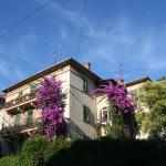 Apartment Bougainvillea, Split