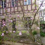 Appartement La Cour Finkwiller, Strasbourg