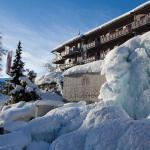 Hotel Pictures: Parkhotel Schoenegg, Grindelwald