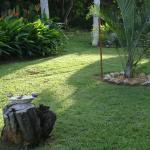 The Enchanted Garden Inn,  Vieques
