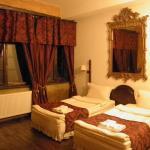 Φωτογραφίες: Hotel Pallatium Manastira, Σβιστόβ