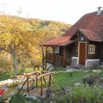 Apartment Cerova Kosa, Mokra Gora