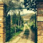 Agriturismo Cerrolungo, La Spezia