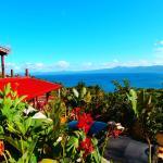 Hotel Pictures: Korovesi Sunshine Villas, Savusavu