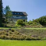Hotel Pictures: Pension Haus Petra, Altenau