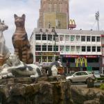 GoREST Kuching,  Kuching