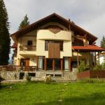 Transylvanian Villa,  Predeal