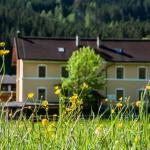 Hotellikuvia: Gabis Lodge, Krimml