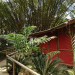 Hotel Pictures: Pirate Cove, Drake