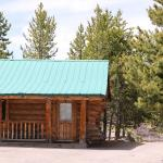 Hibernation Station,  West Yellowstone