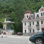 Natali Deluxe Apartments,  Borjomi
