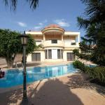 Patatas Villa, Limassol