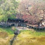 Hotel Pictures: Mapula Lodge, Borokwe Island
