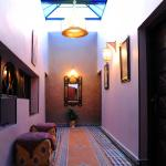 Collier De La Colombe, Meknès