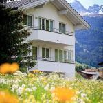 酒店图片: Alpina Appartements, 瑙德斯