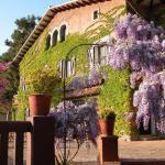 Hotel Pictures: Masia Vista Hermosa, Vallromanas