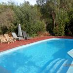 Hotellikuvia: Woollybush Guest House B&B, Woodridge