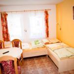 Hotel Pictures: Penzion Mezilesí, Trhové Sviny