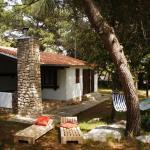 Holiday Home Pine Villa, Pakoštane