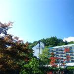 Tateshina Grand Hotel Takinoyu, Chino