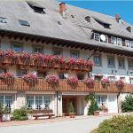 Hotel Pictures: Schwarzwaldgasthof Zur Traube, Titisee-Neustadt