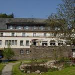 Hotel Pictures: Hotel Diana Garni, Bad Bertrich