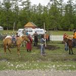 Sunpath Mongolia Tour & Hostel, Ulaanbaatar