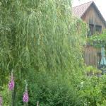Ferienwohnung Lotti,  Trusetal