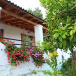 Ulisse Apartments,  Paleokastritsa