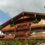 酒店图片: Hofbauer, Itter